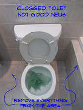 How To Unclog A Toilet Pic2